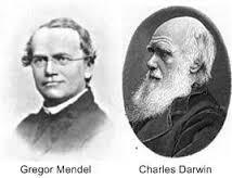 Mendel_Darwin